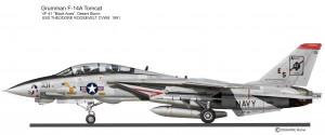 F-14 pin up