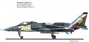 Jaguar 20 ans