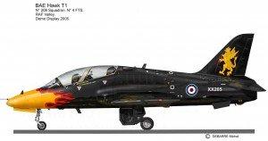 Hawk 205