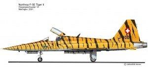 F-5E TIG