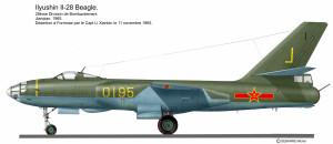 IL-28 Chine