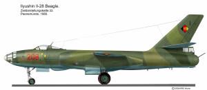 IL-28 DDR