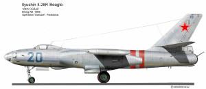 IL-28 R 20 bleu