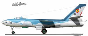 IL-28 Roumanie